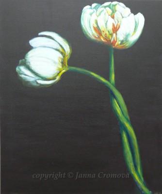White Tulips - acrylic on canvas, 2007, 20x24