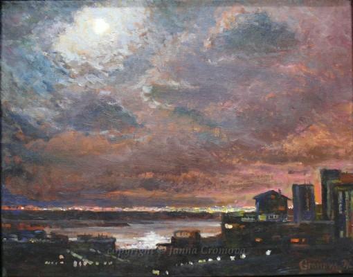 Hawaiian Night, 2011, oil on canvas, 36x46cm