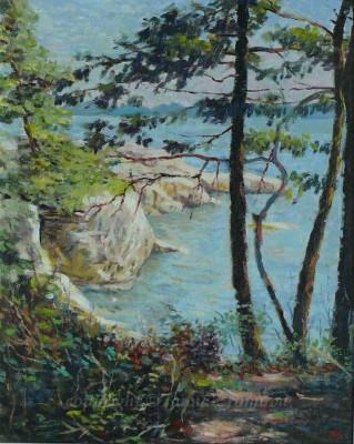 Cliff - oil on canvas, 2009, 16x20