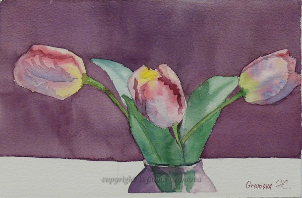 Tulip - watercolour, 18x27.5cm